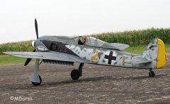 Fw190ThomasPfueller15.jpg