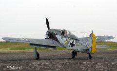Fw190ThomasPfueller16.jpg