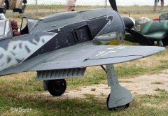 Fw190ThomasPfueller5.jpg