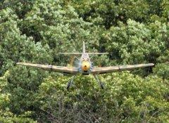 Frankendeifel_Bf109_2012-07-284.jpg