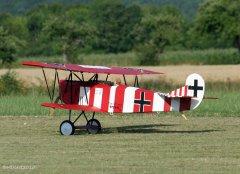 FokkerStrega2.jpg